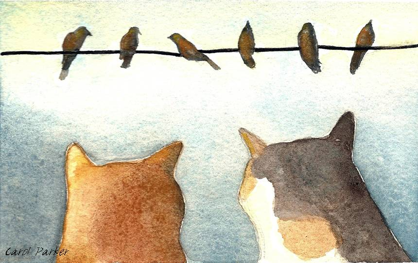 Two cats watch birds on a wire