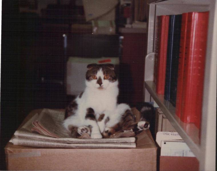 16. taylor sitting on box