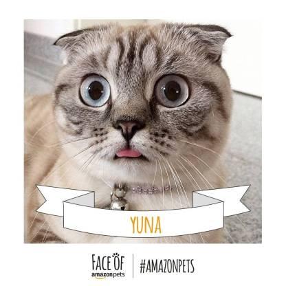 Yuna_Cat._V272264114_