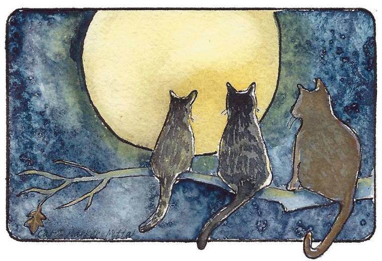 Cats and full moon