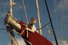 onboard Fandancer