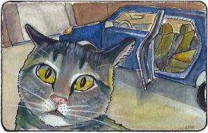 Cat afraid of car. Watercolor drawing.