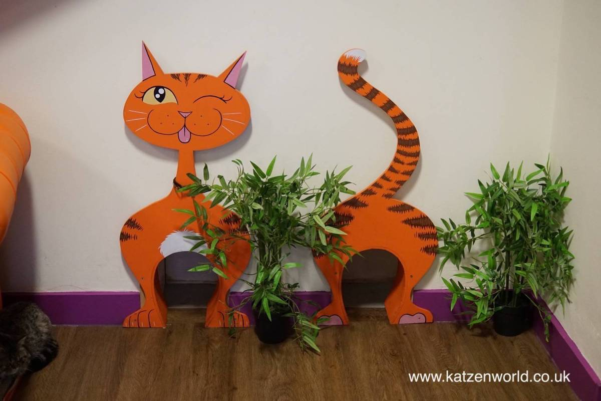 Our visit to Kitty Café - Nottingham: Cafe turned Magical Forest