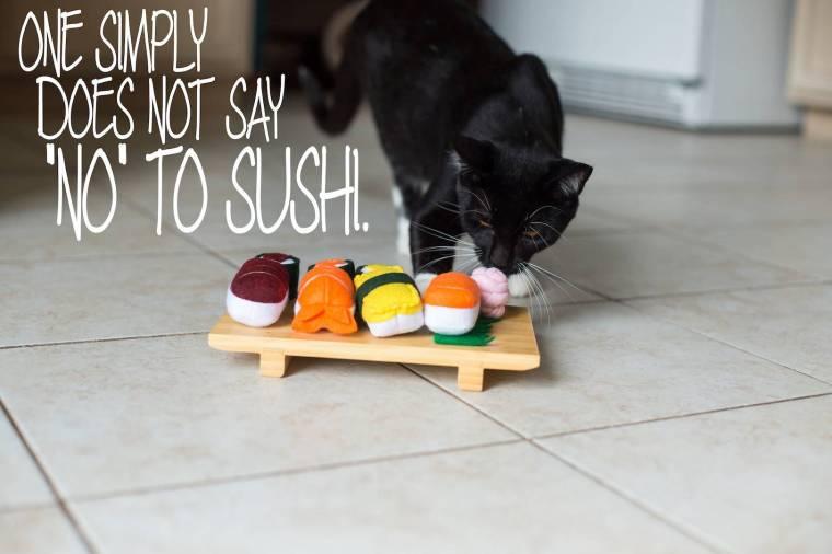 sushi-cat