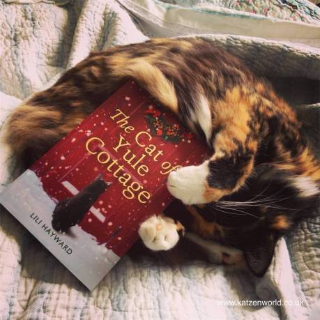 cat-and-cat-of-yule-cottage