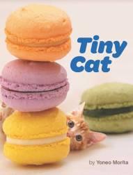 tiny-cat_cover