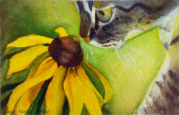 Watercolor painting of cat sniffing a flower.