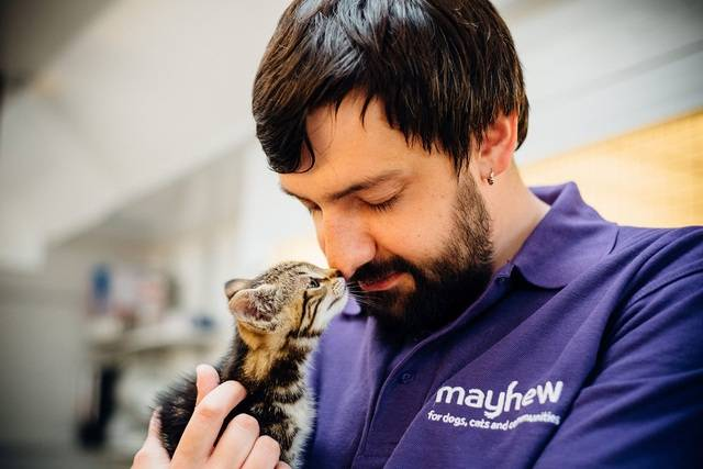 The Mayhew Animal Home Rebrands to 'Mayhew'
