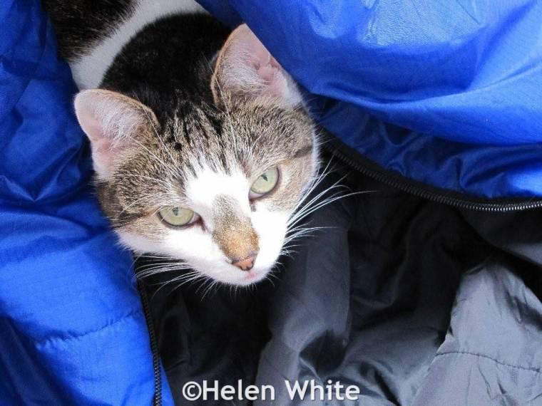 Bobby in sleeping bag.