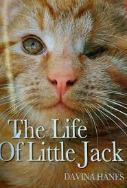 top five cat books by Anita Kelsey