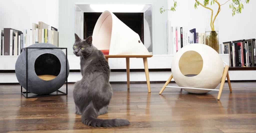 Tuft + Paw Cat Furniture Design competition - Your chance to win $1,500 and...