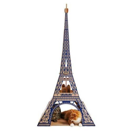 cat landmarks 1