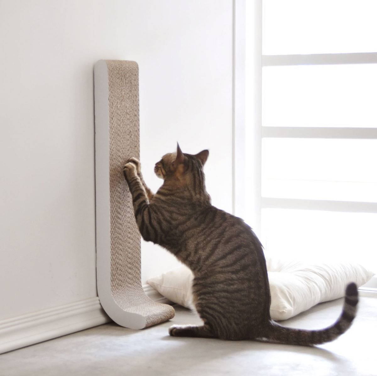 Amazing Other Great Scratching Options Are Wall Posts Or Sofa Corners (See Right).  Posts Donu0027t Have To Be Expensive. There Are Many DIY Articles, Like This  One On ... Awesome Ideas