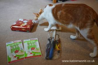 Christmas presents Secret Paw0021