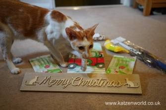 Christmas presents Secret Paw0023