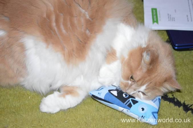 Katzenworld Louise story0003