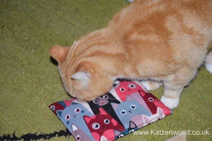 Katzenworld Louise story0004