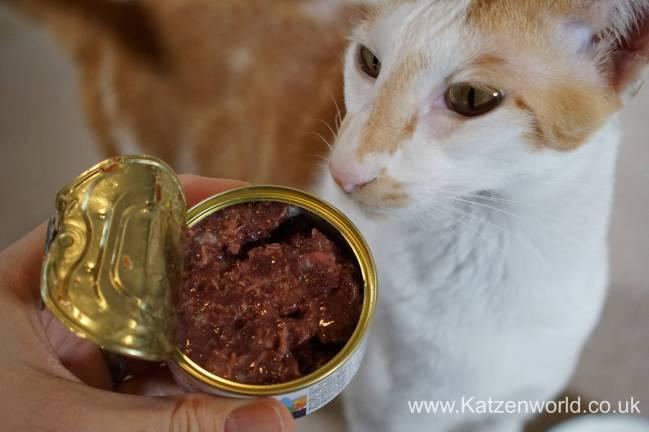 Katzenworld Almo Nature Wild Taste0005