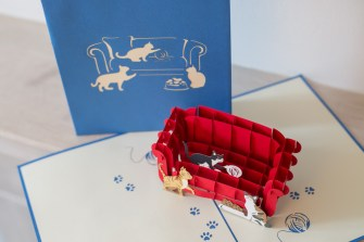Cats-On-A-Sofa-Pop-Up-Card-view-from-top