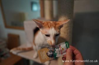 Katzenworld Almo Nature Snack0003