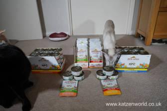 Katzenworld Almo Nature0001