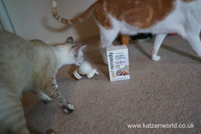Katzenworld Pet Remedy & Animed direct0003