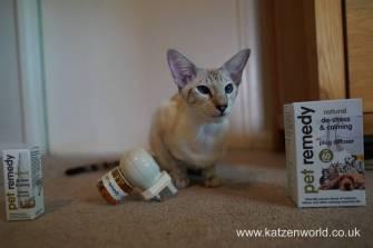 Katzenworld Pet Remedy & Animed direct0006