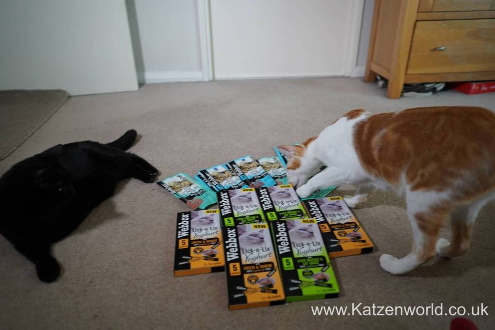 Katzenworld webbox cat treats0005