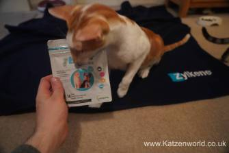 Katzenworld Zylkene0004