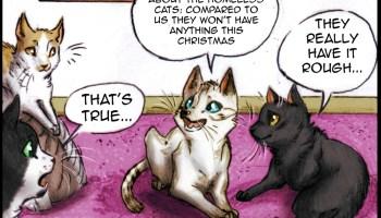 Katzenworld Cats in