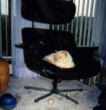 His chair
