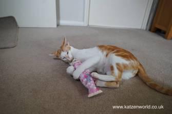 Katzenworld Japanese cat toy0008