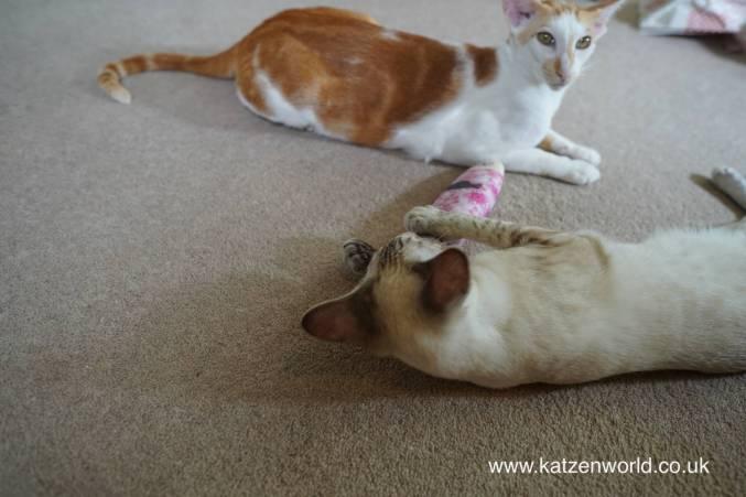 Katzenworld Japanese cat toy0019