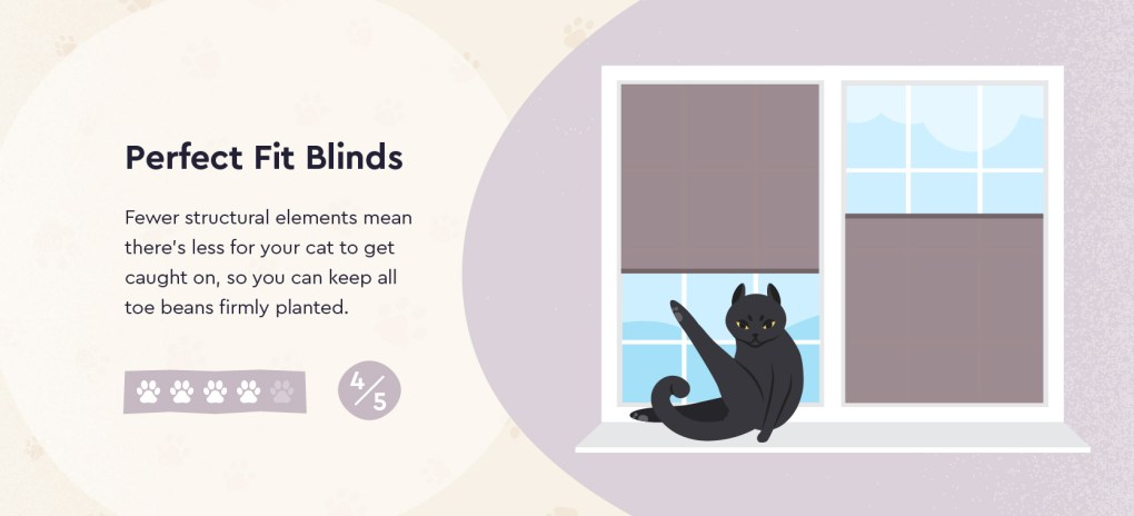 Perfect Fit Blinds and a cat sat on a window sill
