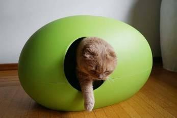 140118-designer-cat-litter-box-modern-litterbox-9 - copie