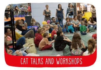 tv_cat_talks_and_workshops