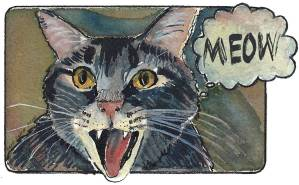 Watercolor and Ink Drawing. MEOW. Carol Parker Mittal