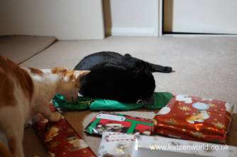 Christmas presents Secret Paw0008