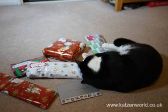 Christmas presents Secret Paw0014