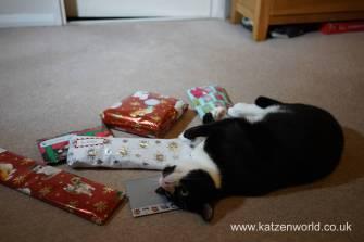 Christmas presents Secret Paw0015