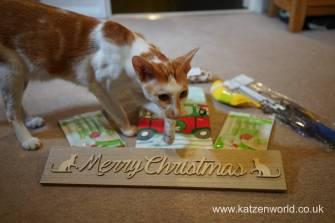 Christmas presents Secret Paw0023