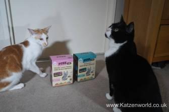 Oliver & Renegade cat food0002