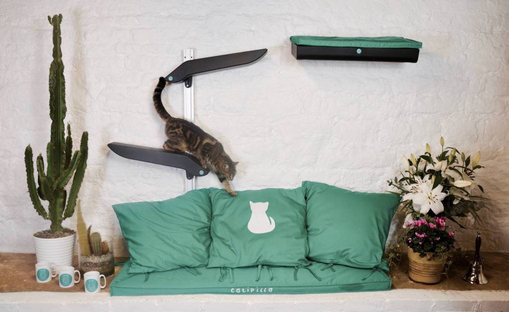 Introducing Catipilla - Modern Cat Climbing Frames - Katzenworld