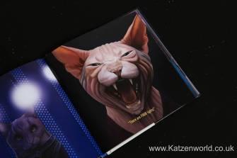 Katzenworld StarTrek Cats