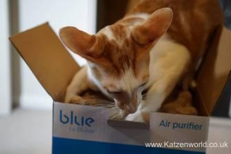 blue air 0004