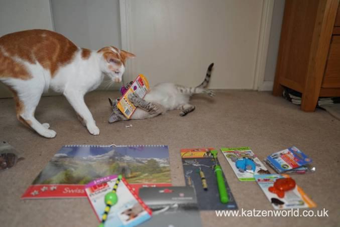 Katzenworld Christmas Stories0016