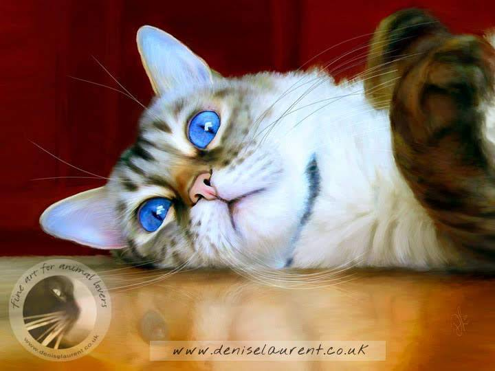 the boss bengal cat print