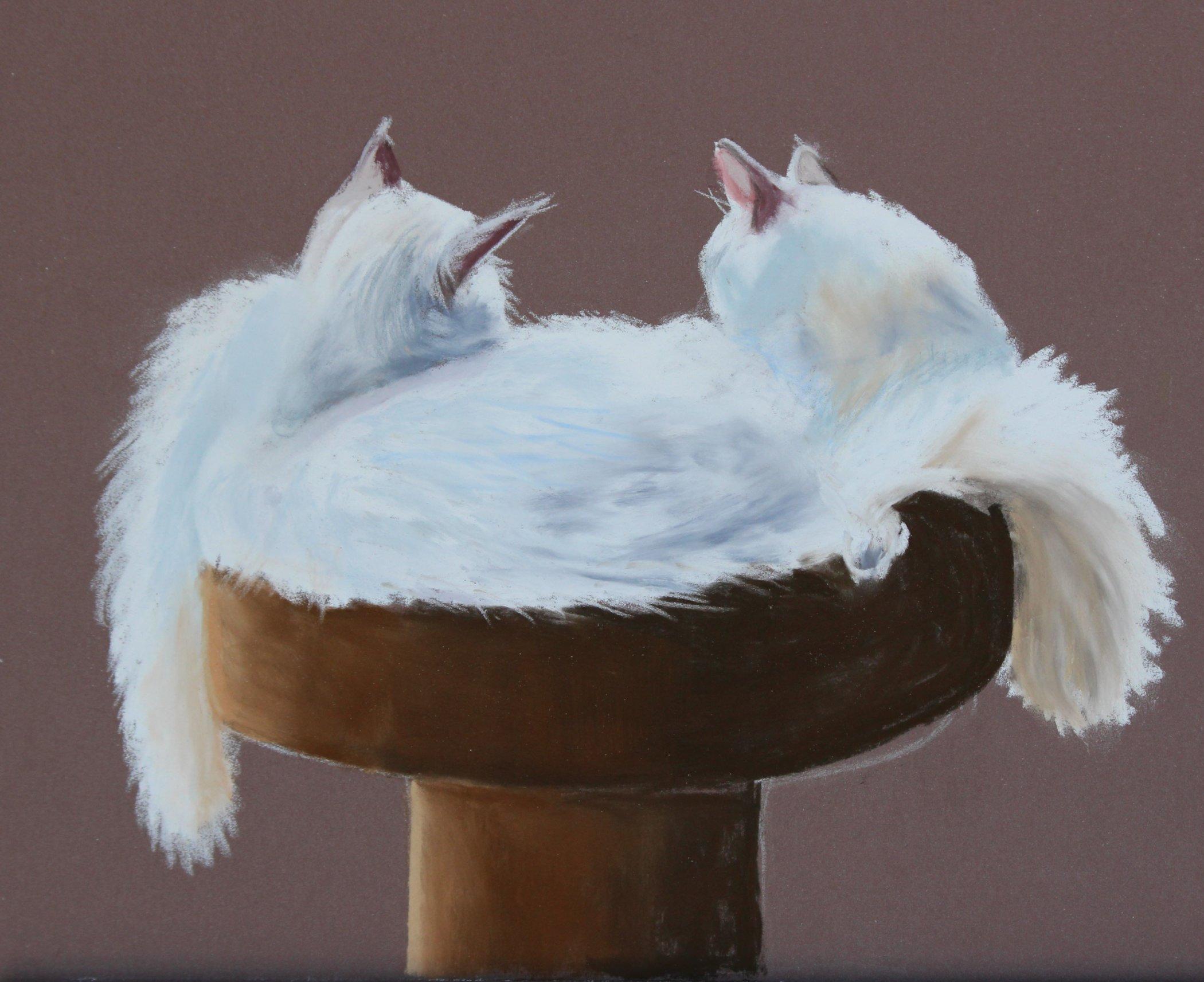 Friday Art Cat: Two Ragdolls