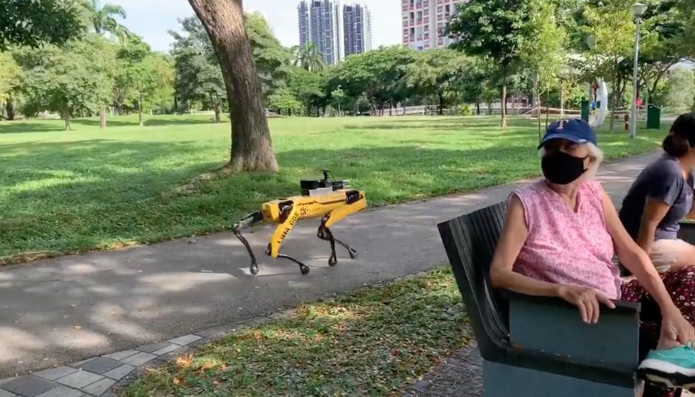 Spot Mini bei der Arbeit in einem Park in Singapur