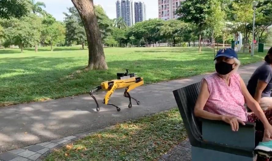 Ein Roboterhund erinnert Parkbesucher daran, die Abstandsregeln einzuhalten